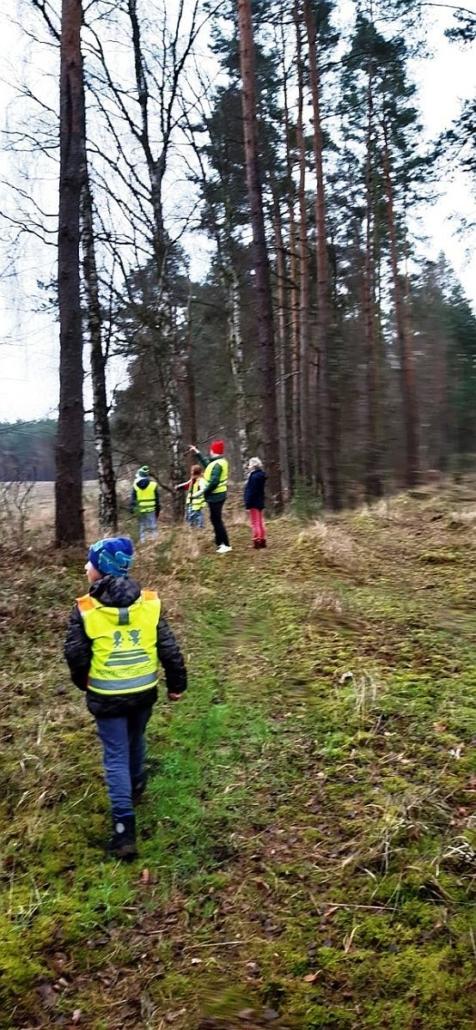 Vier Kinder bzw. Jugendliche sind mit ihrer Betreuerin am Waldrand unterwegs. Sie tragen gelbe Warnwesten.