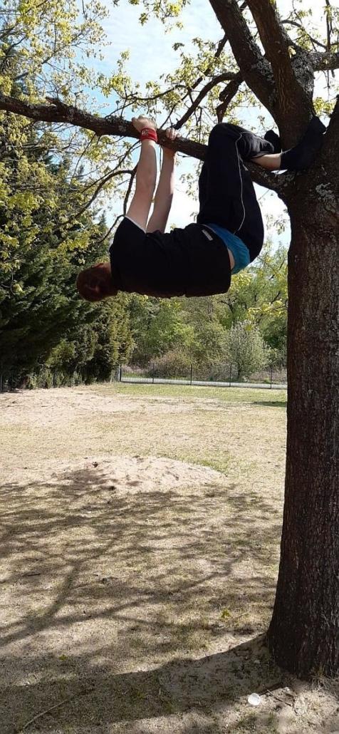 En Jung mit braunem T-Shirt hängt mit Armen und Beinen an einem Ast, der etwa in 2 Metern Höhe fast waagerecht vom Baumstamm absteht.