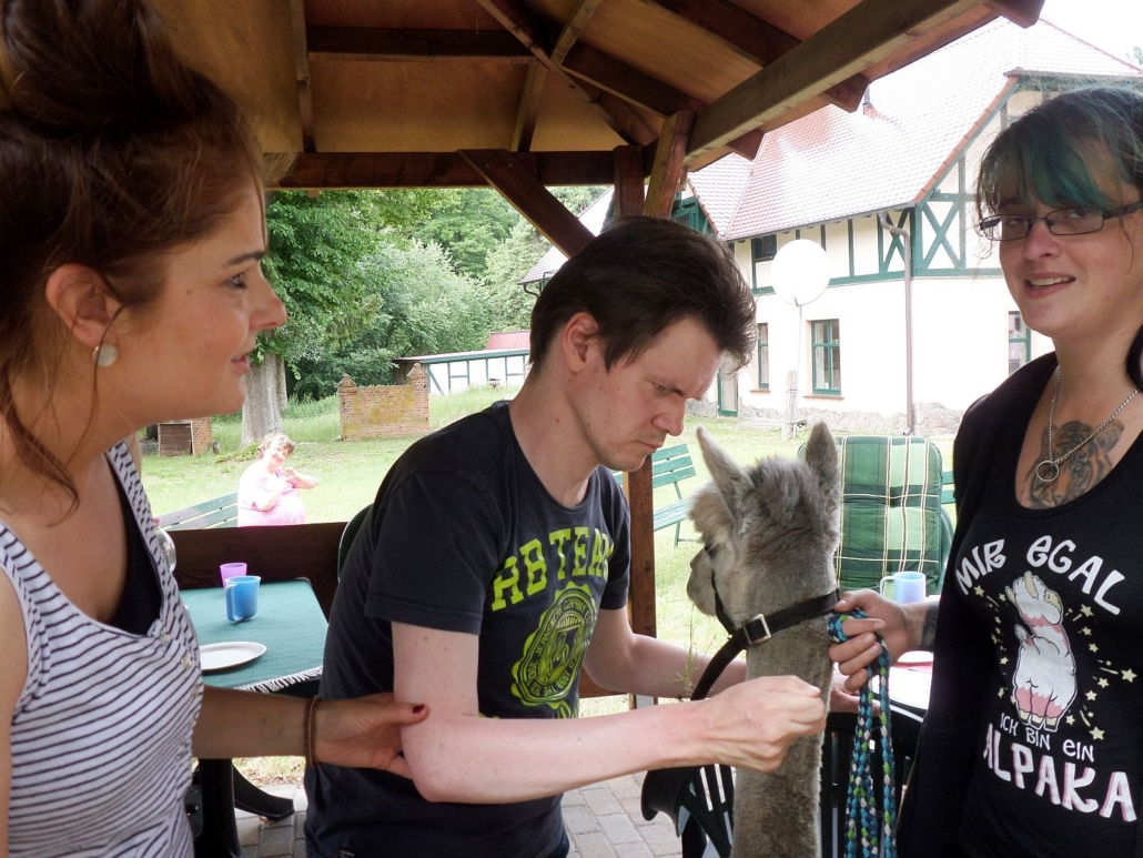 Frau Henning hält das graue Alpaka an der kurzen Leine, während ein junger Mann dessen Hals mit beiden Händen streichelt. Dabei steht noch eine Betreuerin.