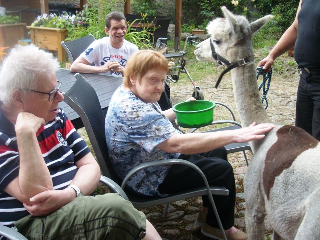 """Eine Bewohnerin des """"Damhirsch"""" sitzt in einem Gartenstuhl. In der linken Hand hält sie eine grüne Futterschüssel. Mit rechts streichelt sie Karuso."""