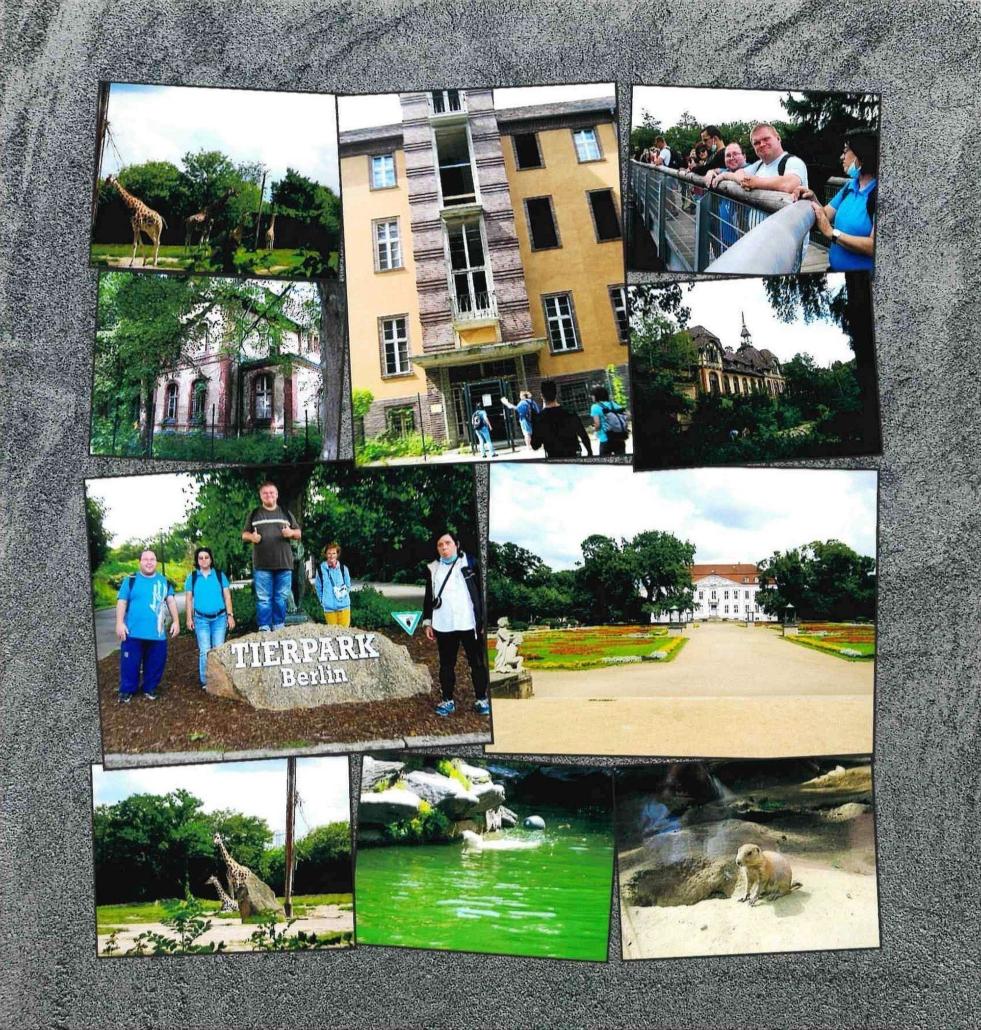 Eine Collage aus insgesamt acht Fotos, die sich teilweise überlappen. Unter anderem mit Bildern vom Berliner Tierpark (Giraffen, Eisbären, Schloss, Gruppenfoto) und von den Beelitzer Heilstätten.